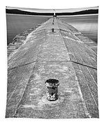 The Jetty Tapestry