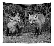 The Kits Monochrome Tapestry