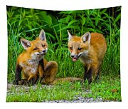 The Kits Tapestry