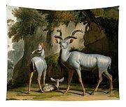 A Kudus Or Kudu Tapestry