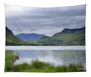 The Lake Tapestry