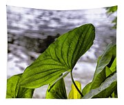 The Leaf Of A Water Plant Tapestry