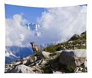 The Little Ibex Tapestry