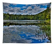 The Majestic Cary Lake Tapestry