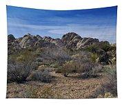 The Mojave Desert Tapestry