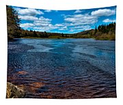 The Moose River At The Green Bridge Tapestry