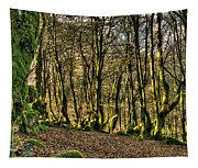 The Mossy Creatures Of The  Old Beech Forest 4 Tapestry