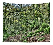 The Mossy Creatures Of The  Old Beech Forest 5 Tapestry