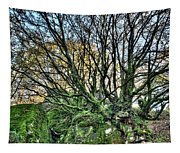 The Mossy Creatures Of The  Old Beech Forest 8 Tapestry