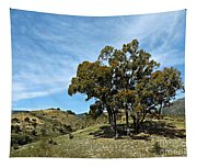 The Other Side Of Spain Tapestry