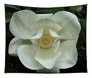 The Perfect Magnolia Bloom Tapestry