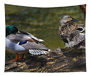 The Perfect Mallard Couple Tapestry