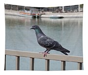 The Posing Pigeon Tapestry