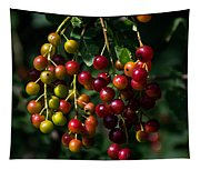 The Ripening Tapestry