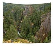 The Scenic Cheakamus River Gorge Tapestry