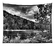 The Secluded Bald Mountain Pond Tapestry