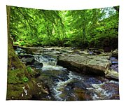 The Shankhill River Shortly Tapestry