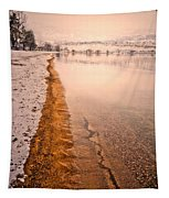 The Shore In Winter Tapestry