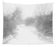 The Snowy Winter Path Tapestry