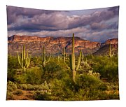 The Sonoran Golden Hour  Tapestry