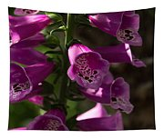 The Splendor Of Foxgloves Tapestry