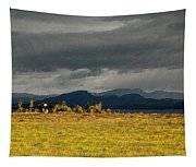 The Storm Is Coming Tapestry