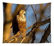 The Sundowner Tapestry