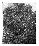 The Survivor Tree In Black And White Tapestry