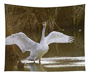 The Swan Spreads Its Wimgs Tapestry