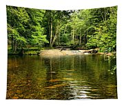 The Swimming Hole Tapestry