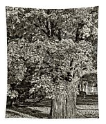 The Swinging Tree Sepia Tapestry
