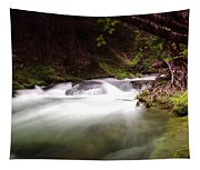 The Tananamawas River Tapestry