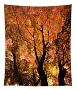 The Trees Dance As The Sun Smiles Tapestry