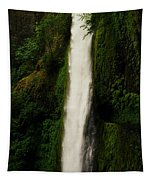 The Tunnel Behind Tunnels Falls Tapestry