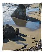The Unexplored Beach Tapestry