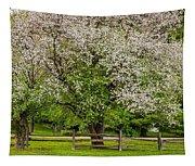 The Valley Awakens Tapestry