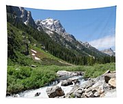 The Valley Beyond Tapestry