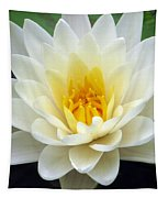The Water Lilies Collection - 03 Tapestry