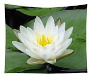 The Water Lilies Collection - 04 Tapestry