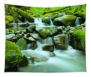 The Way Of Healing Water  Tapestry