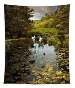 The Wetlands Tapestry
