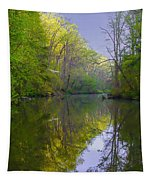 The Wissahickon Creek In The Morning Tapestry
