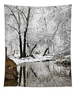 The Wonders Of Winter  Tapestry