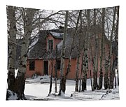 Thee Old Pink House Tapestry