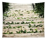 There Is No Stopping Nature Tapestry