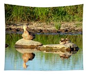These Ducks Rock Tapestry