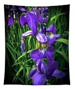 Colors Of Iris Tapestry