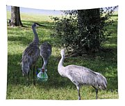 Thirsty Cranes Tapestry