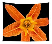 This Orange Lily Tapestry
