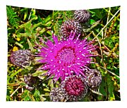 Thistle In Saint Mary's Ecological Reserve-newfoundland Tapestry